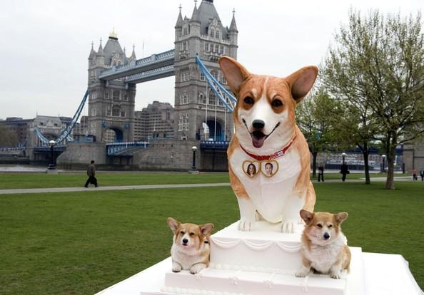perros de la reina