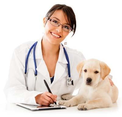 Productos Veterinarios